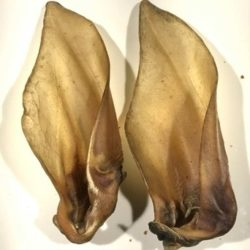 dried buffalo ears natural dog treats