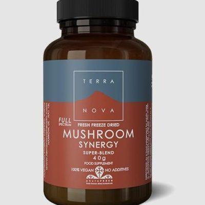 Mushroom super blend complex
