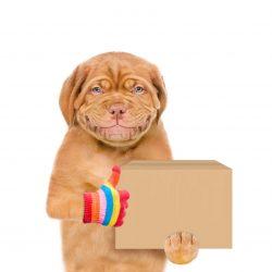 Mailbox Deals (free postage)